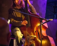 Jazz_festival_-_Terra_Nova_15